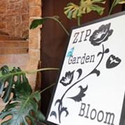 ZIP Bloom